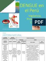 DengueSCHCH.pdf
