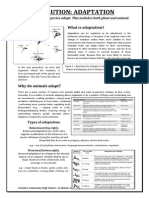 evolution worksheet - adaptation