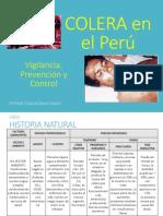 ColeraSCHCH.pdf