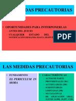 (3) Las Medidas Precautorias