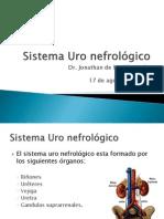Sistema Uro Nefrológico