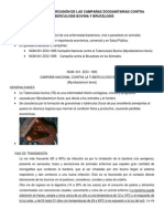 Tuberculosis Bovina y Brucelosis
