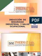 48796360 Induccion Contratistas 2010
