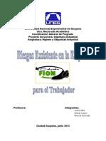 Proyecto Final de Higiene y Seguridad Industrial