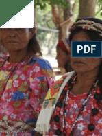 Pueblo Barí - Reseña