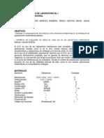 Informe de Practica de Laboratorio No (1)