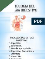 Histologia Del Sistema Digestivo de Estudio