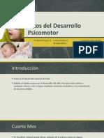 Hitos DPM 4-6 meses