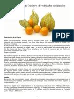El Aguaymanto ( Uchuva ) Propiedades Medicinales.