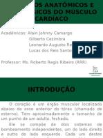 ASPECTOS ANATÔMICOS E FISIOLÓGICOS DO MÚSCULO CARDÍACO