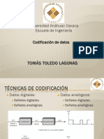 codificacindedatos-110304100340-phpapp02
