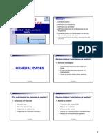 Sistemas Integrados de Gestion Ing. Aldo Raggio g.