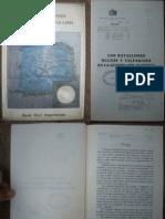 Guerra Del Pacífico - Los Batallones Bulnes Y Valparaiso