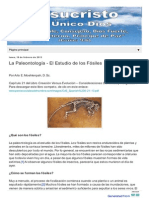 Paleontologia El Estudio de Los Dinosaurios