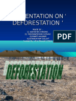 Presentation on ' Deforestation '