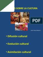 Teorías Sobre La Cultura