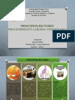 Principios Rectores Del Procedimiento Laboral Venezolano- Vanessa Abdul