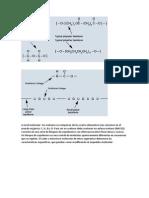 A Nivel Molecular Los Uretanos Se Componen de Los Cuatro Elementos Más Comunes en El Mundo Orgánico