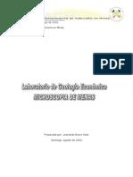 Gui_a_Lab._Microscopi_a.pdf