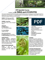 Tropical Ferns and Lycophytes
