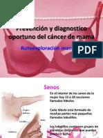 autoexploracion mamaria