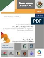 Diagnóstico y Tratamiento Del Embarazo Ectópico en Mujeres de Edad Reproductiva en Segundo y Tercer Nivel de Atención_GRR681