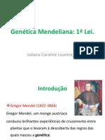 Genética Mendelianafinal