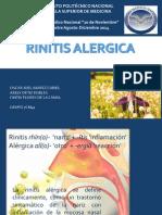 Rinitis alérgica (1)