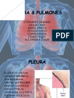 Pulmones Ta