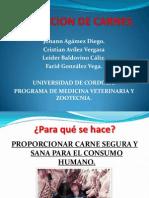 Inspeccion de Carnes (1)