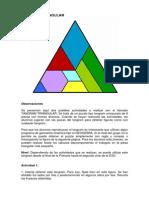 Tang Ram Triangular Profesor a Do