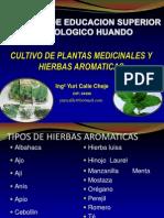 Curso Plantas Medicinales y Aromaticas 1 Introduccion