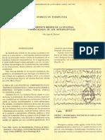 Amd 1985 07-05-203 211 Tratamientos Supuiestamente