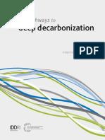 DEcarbonization DDPP Interim 2014 Report