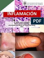 Inflamacion Smp 2014 Final