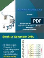 Nucleic Acids 3