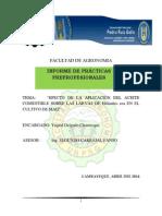 Informe Practicas Pre Ingrid Chumioque