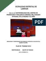Plan de Trabajo Cpvc 2014 MDL