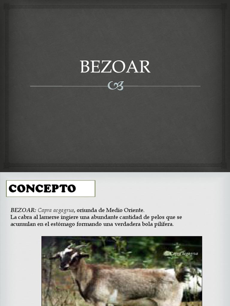 BEZOAR.pptx