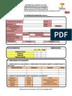 Formato de Visita de Inspeccion Pedagogica(1)
