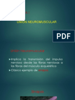 Union Neuromuscular