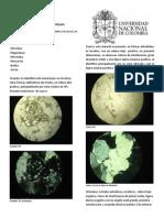 Informe Mineralogia.docx