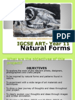 igcse art- year 11 weebly week 1 natural forms