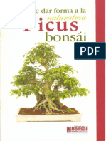 Bonsai El Ficus Bonsai