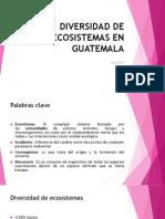 Diversidad de Ecosistemas_Clase II