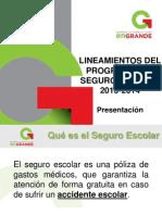 Seguro Escolar Supervisores 2013-2014 (1)