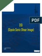 DSI_SS.pdf