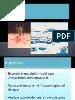 Presentacion Fisiopatologia Dengue Dra Melida Salinas
