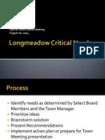Longmeadow Critical Needs