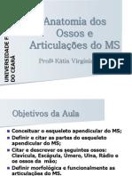 Anatomia dos Ossos e Articulações do MS.pdf